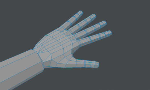 Hand020
