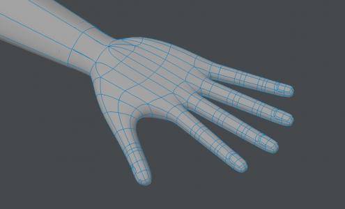 Hand021