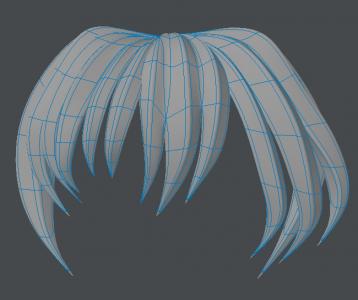 Hair020